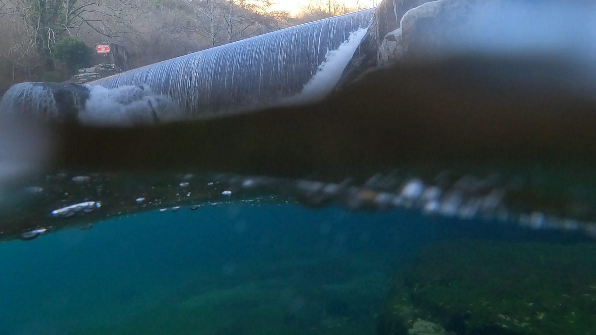 Vue sub-aquatique de la Jonte